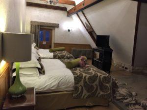 plush room Manor House
