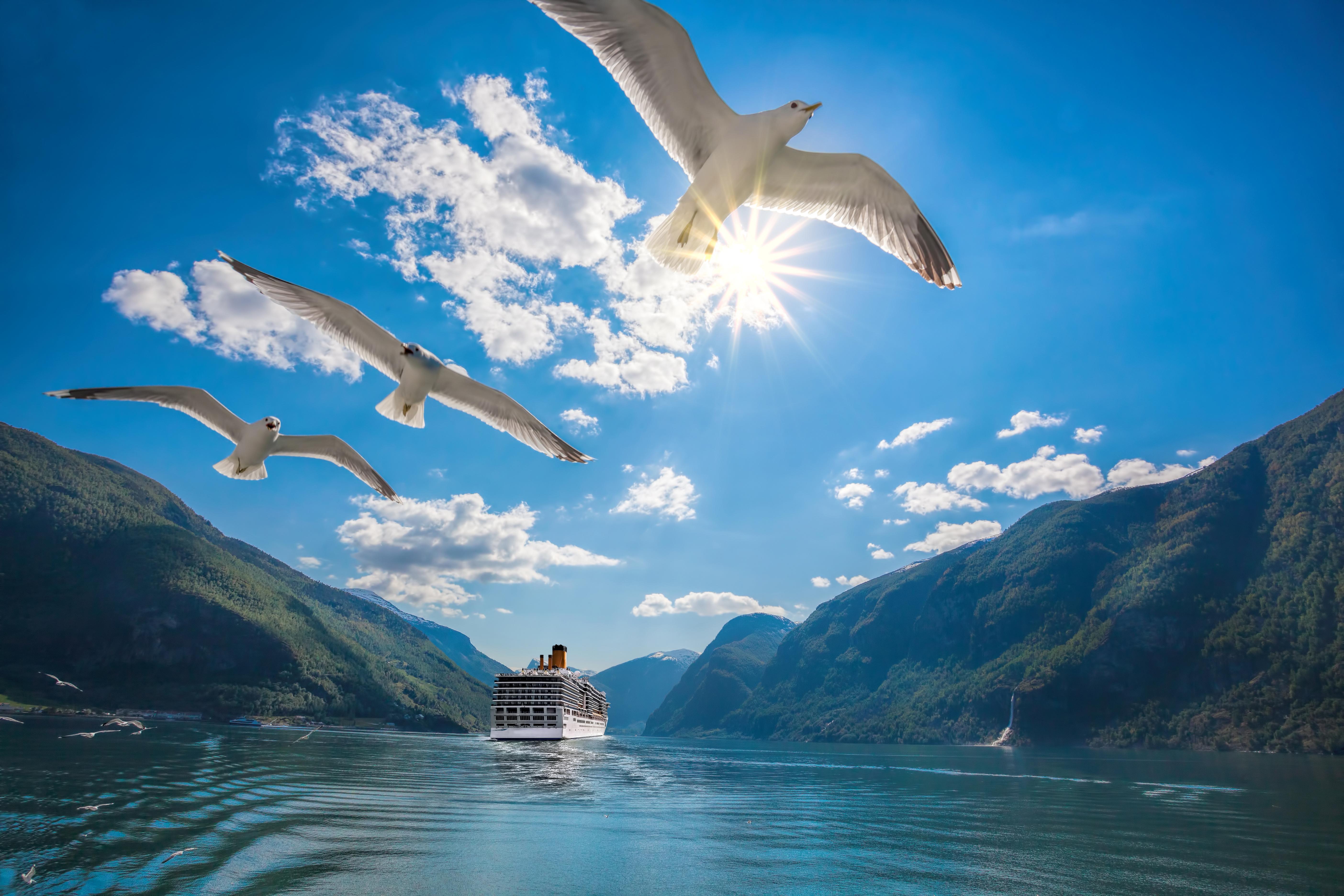 royal caribbean cruise offer