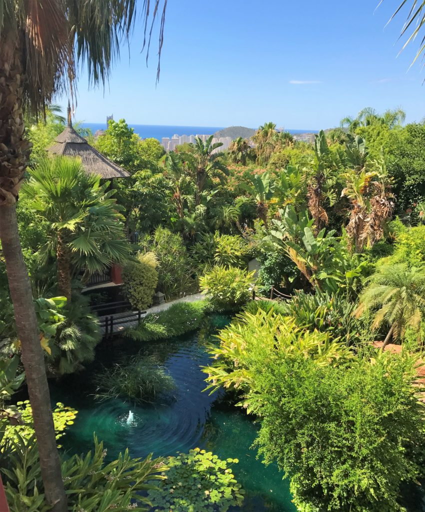 Asia Gardens Barcelo review