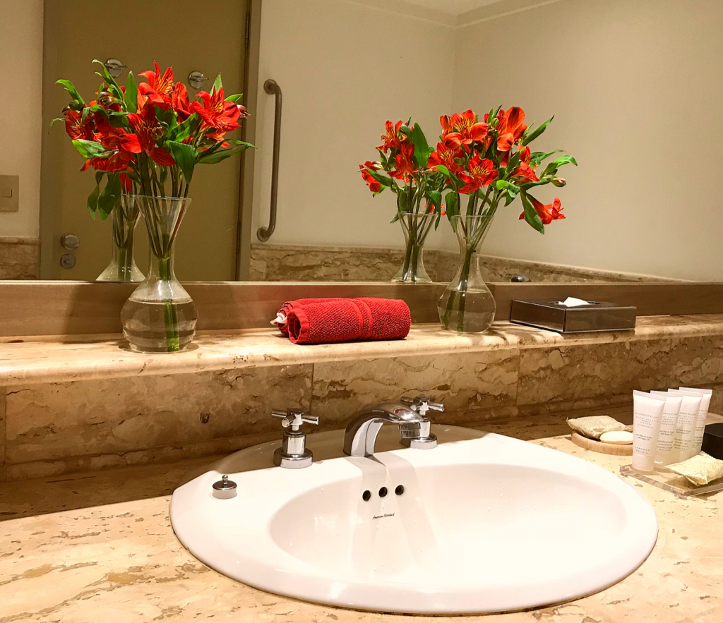 Intercontinental Hotel Sao Paolo Brazil review sink