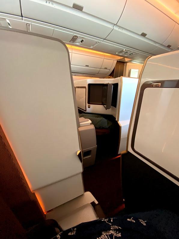 """Virgins A350 Upper Class suite """"door"""" or prvacy screen"""