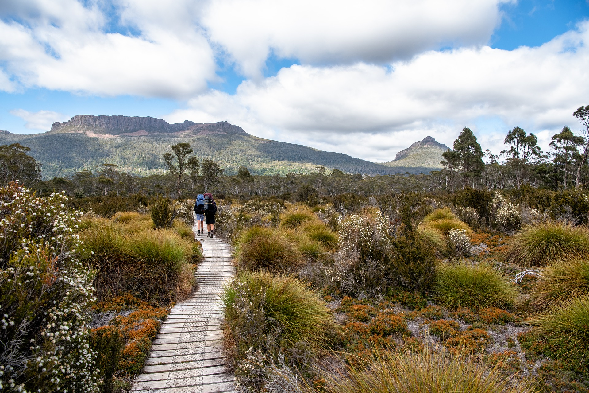 Cradle Mountain Track, Tasmania