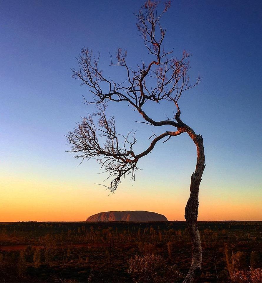 Sunrise over Uluru, NT